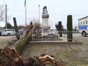 Il monumento di Terranova spezzato dall'albero abbattuto dal maltempo il 5 febbraio 2015 (Foto Comune di Pontelongo)
